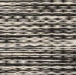 DS-02 Zebra